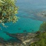 Güney Kıbrıs vize işlemleri