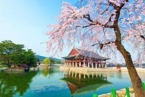 Ucuz Güney Kore Vizesi